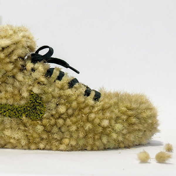 shoe_grasshopper_instagram.jpg
