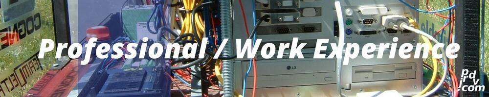 Juan Pablo Rodriguez DV Professional / Work Experience