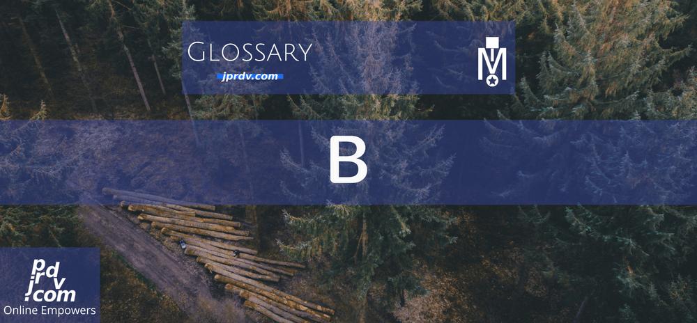 B (Magnosbusiness Glossary)