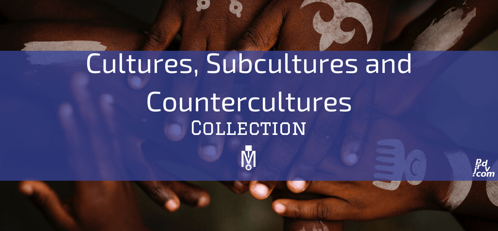 Cultures, Subcultures and Countercultures Magnobusiness Collection