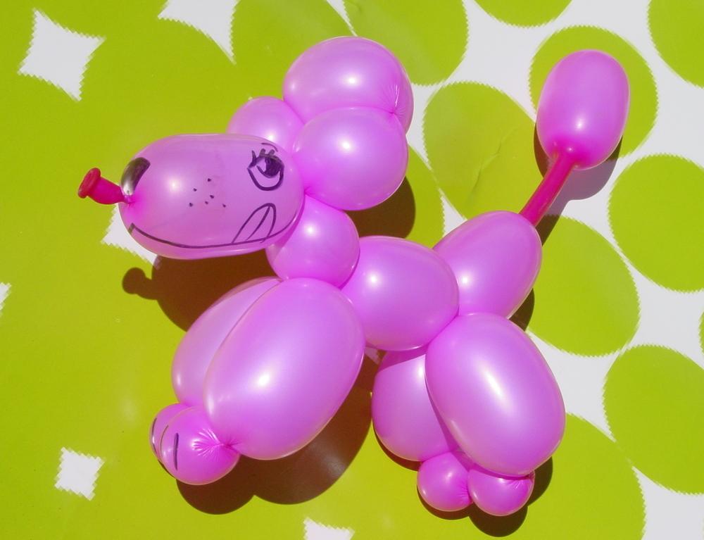 pink poodle_OT.JPG
