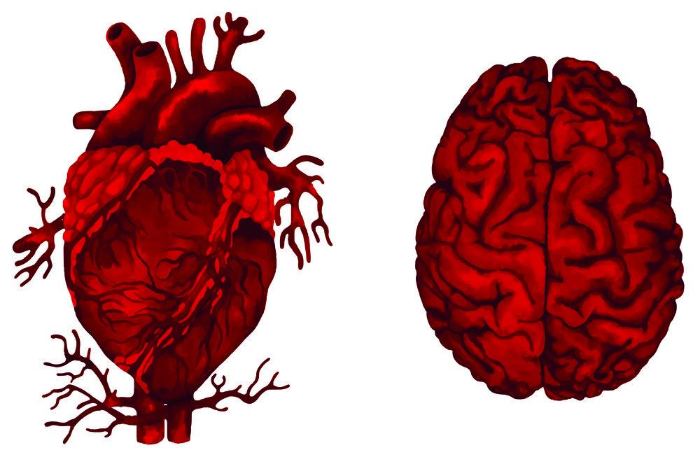 Mantra Herz und Verstand