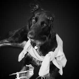 Nahla Dog