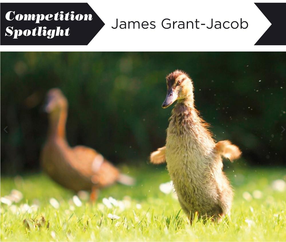 Image ©James Grant-Jacob