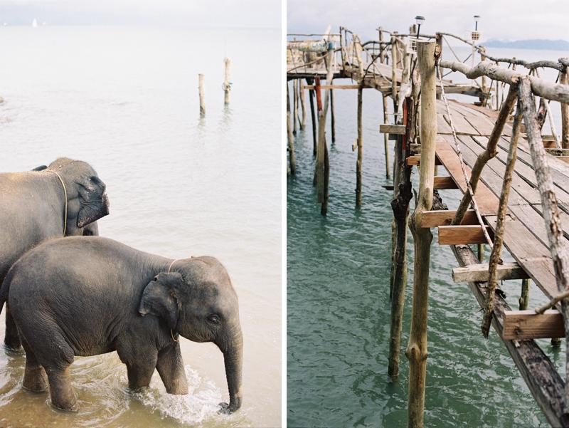 Thai017.jpg