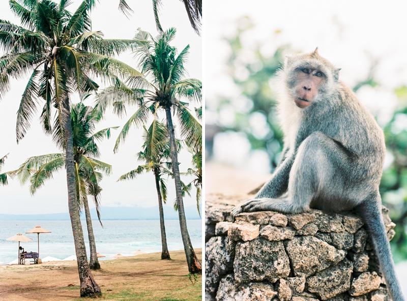 Bali Love 07.jpg