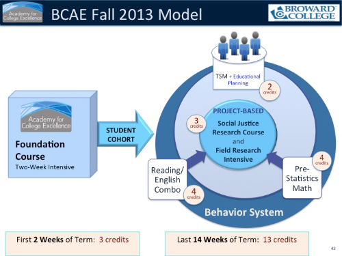 ACE Cohort Model for BCAE