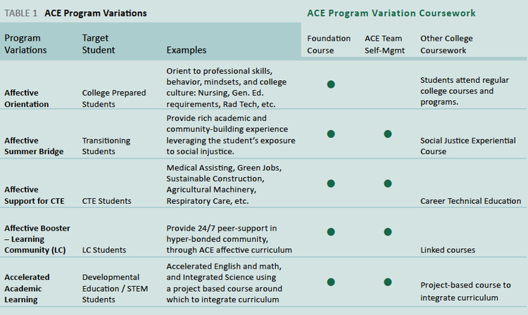 Table 1: ACE Program Variations