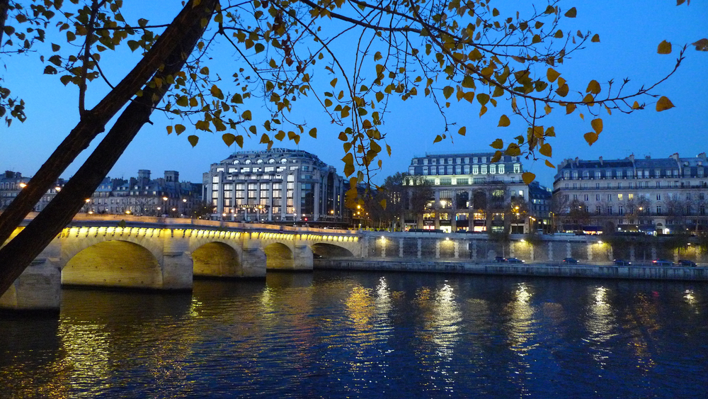 lights on the seine.jpg