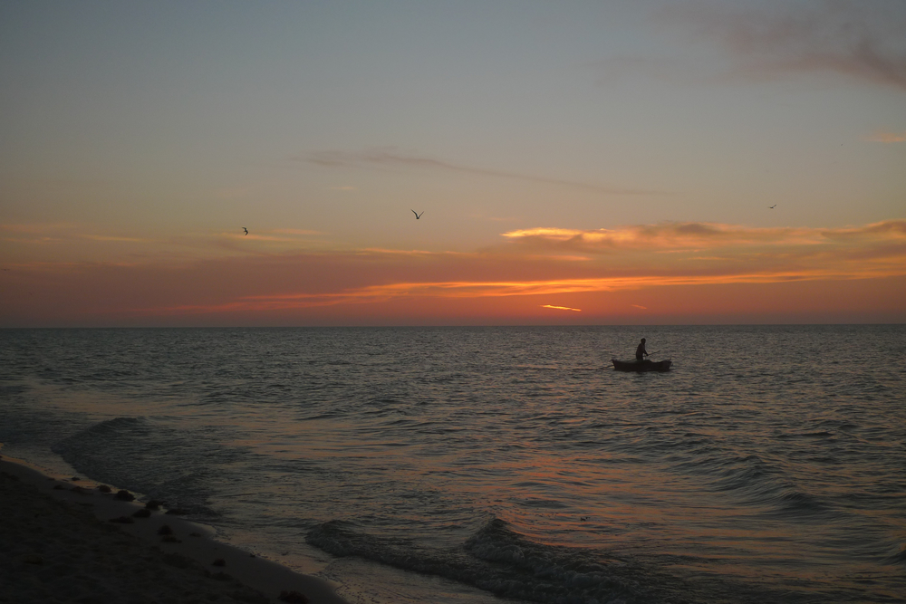 fisherman and pelicans at sunset.jpg