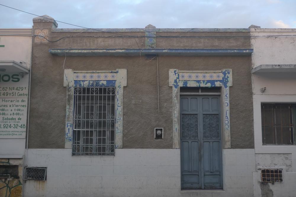 blue flowers facade.jpg