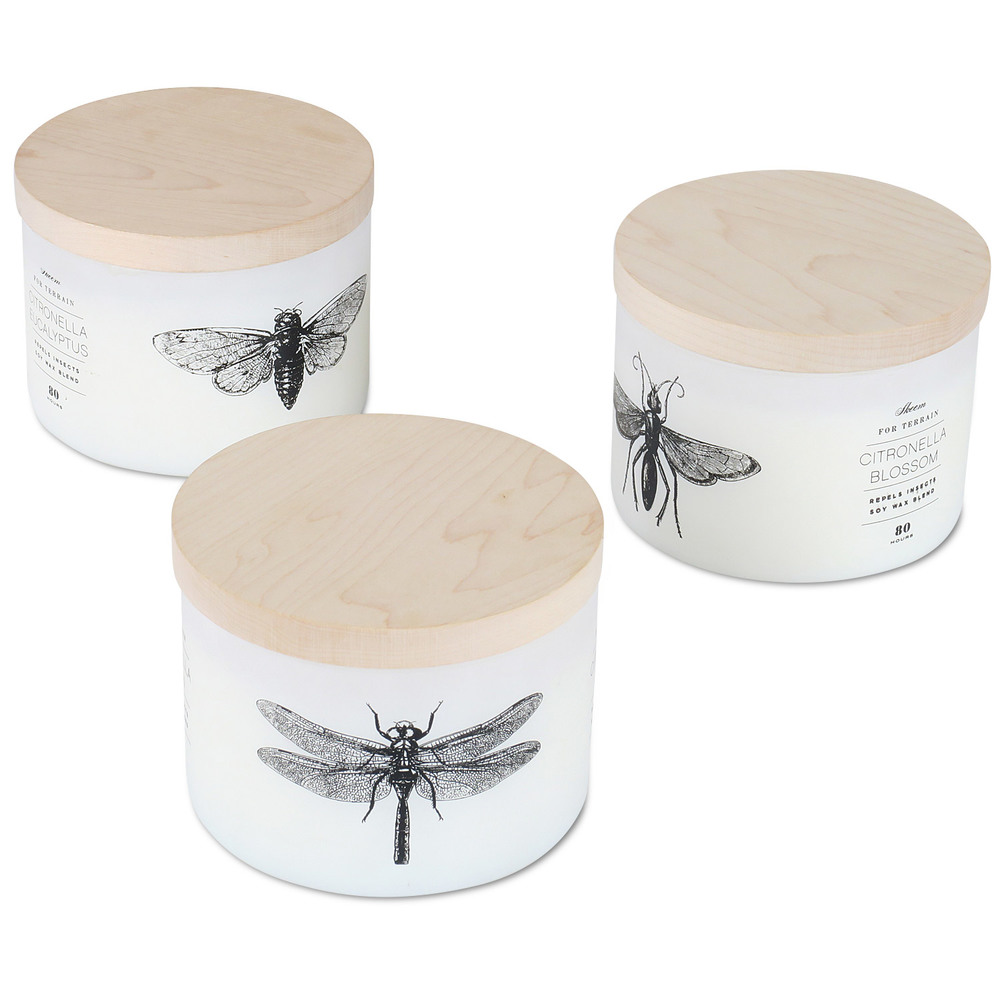 Citronella Entomology candles