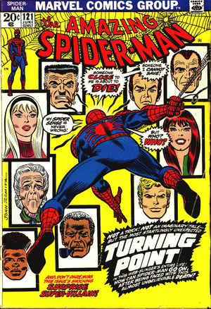 Comics were a great escape. Marvel and DC Comics became my substitute family. And Spider-Man was my favorite character.
