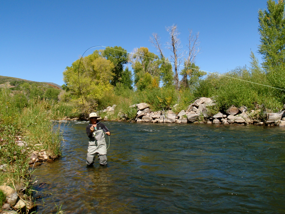 Provo river guide service fish of utah photo gallery for Park city fly fishing