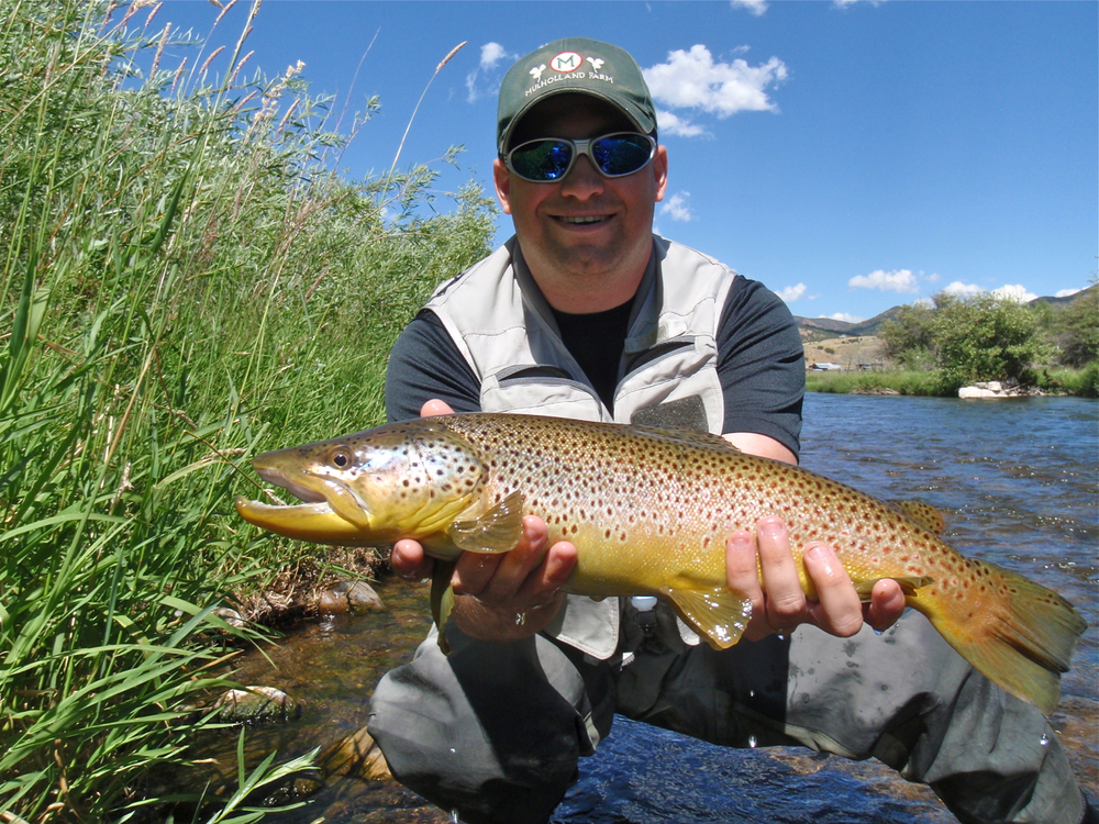 Utah rivers park city fly fishing guides provo river for Weber river fishing