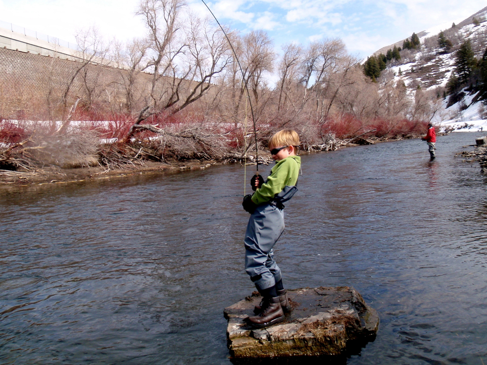 Utah rivers park city fly fishing guides provo river for Provo river fly fishing