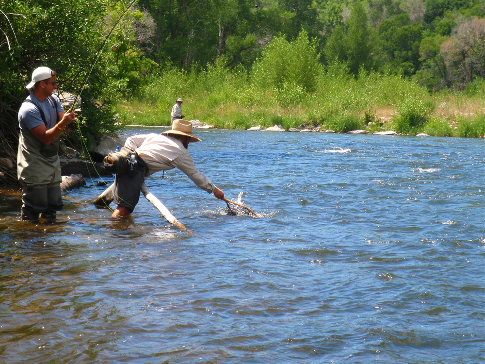 Fly fishing provo river park city utah park city fly for Trout fishing utah