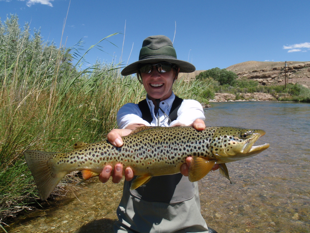 Rivers x park city fly fishing guides provo river for Fly fishing utah