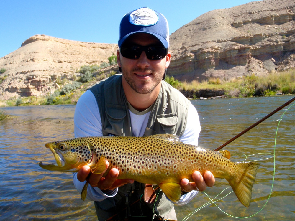 brown trout, small streams, Utah