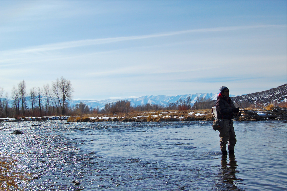 Dry fly fishing on the middle, Presidents Day, 2013