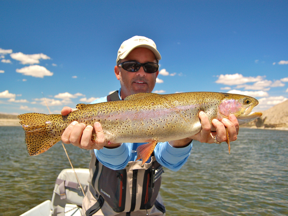 Utah rivers park city fly fishing guides provo river for Wyoming fishing license