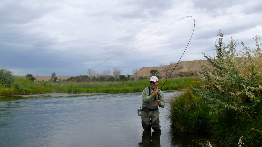 Testimonials park city fly fishing guides provo river for Provo river fishing report
