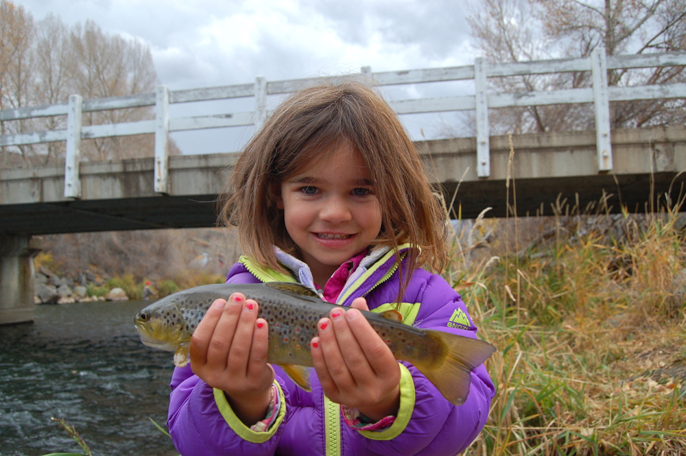 Finley, age four, with a Provo River brown