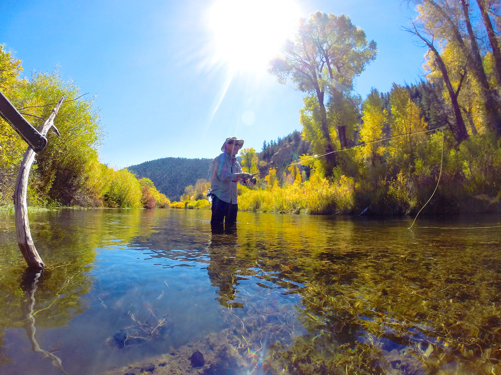 fly-fishing-blue-ribbon-fisheries-utah.jpg