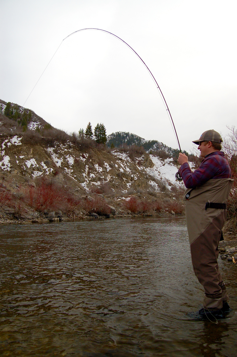 Lower provo river park city fly fishing guides provo for Park city fly fishing