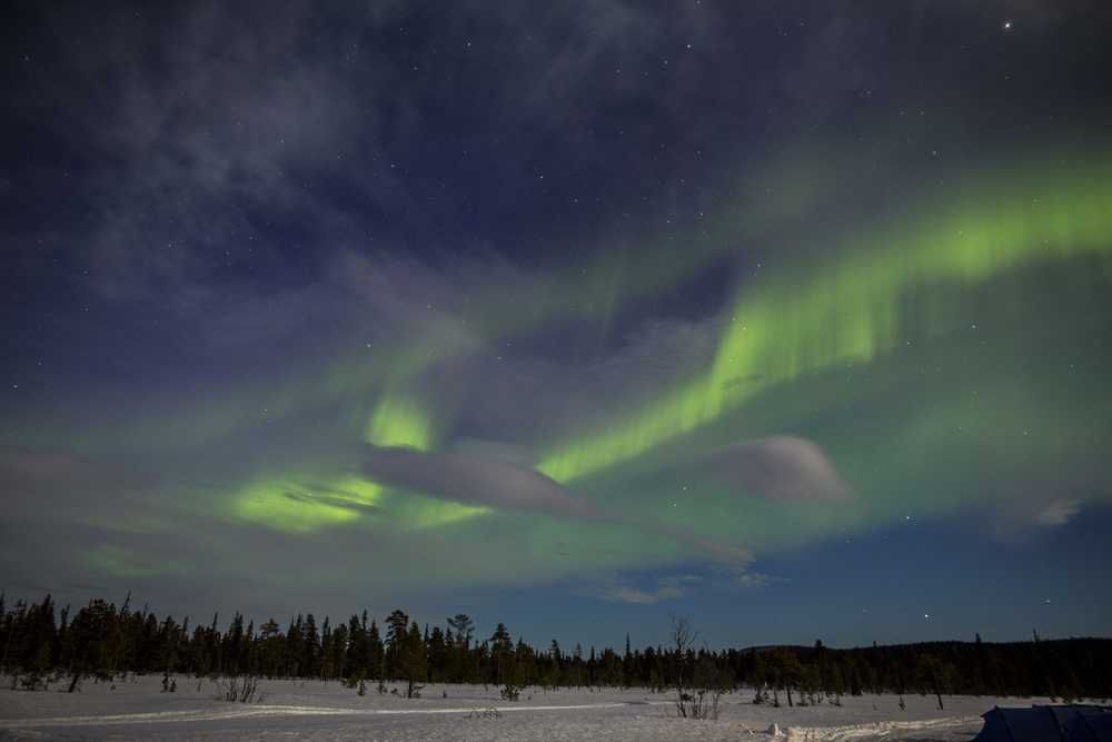 Aurora Borealis dances over our heads on Day 5 of Fjällräven Polar. (Photo by Håkan Wike for Fjällräven International. All rights reserved.)