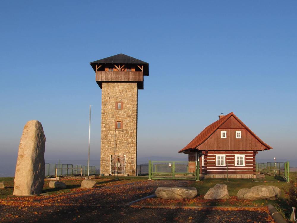 borovice2.jpg