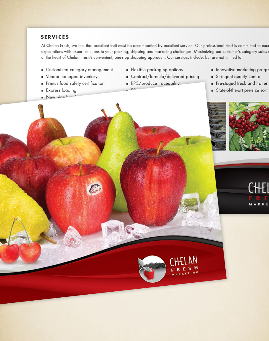 Brochure-CFM!.jpg