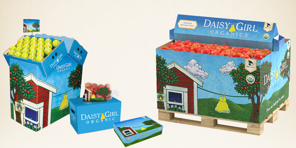 Daisy Girl for CMI Orchards