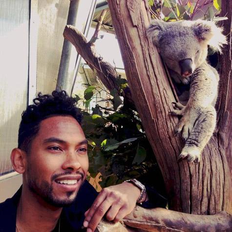 miguel-koala.jpg