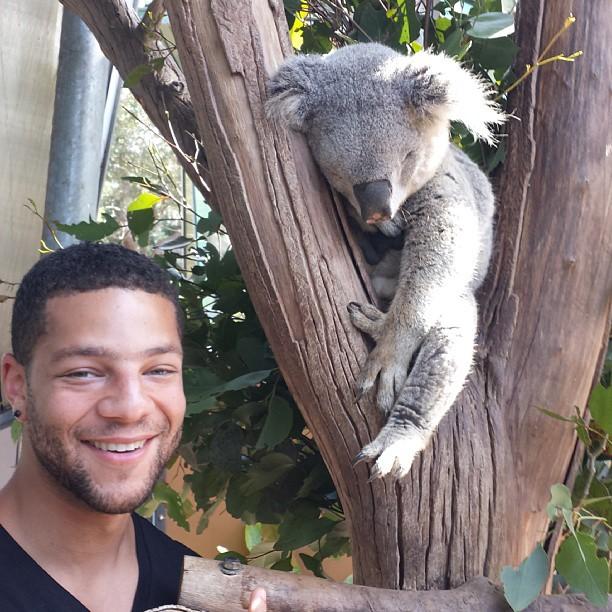 Jayme David Silverstein looking hot next to a tired koala.jpg