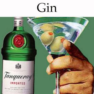 Gin-Thumbnail.jpg