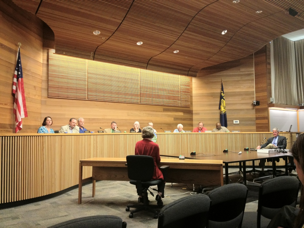 Downtown resident Sherrill Necessary testifies to Eugene City Council in support of the EWEB Riverfront Master Plan and land use components.