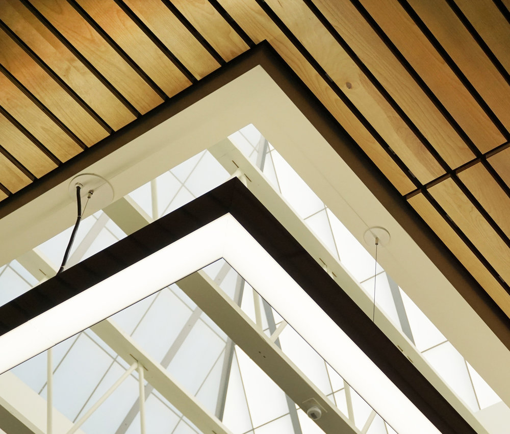 Ceiling Skylight and Slats_web.jpg