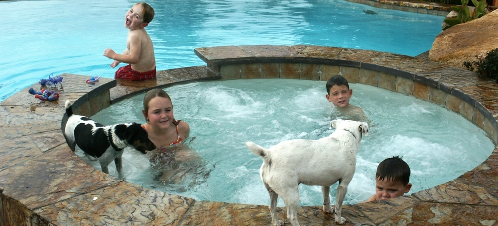 Kids & Dogs in the jacuzzi & Pool.jpg
