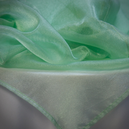 Celedon Organza Available In: 84x84