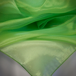 Lime Organza Available In: 84x84