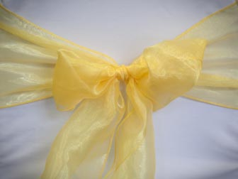 Yellow Organza
