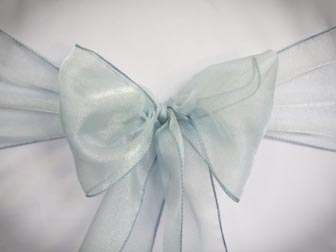 Light Blue Organza