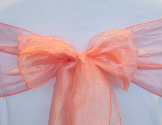 Light Coral Organza