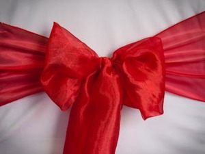 Red Mirror Organza Sash