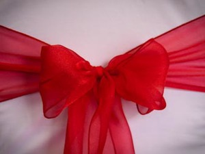 Red Sparkle Organza Sash