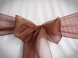 Chocolate Organza Sash