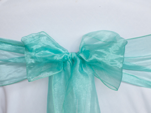 Mint Green Organza