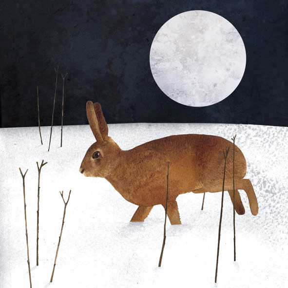 Wintery Hare © Francesca Chalk