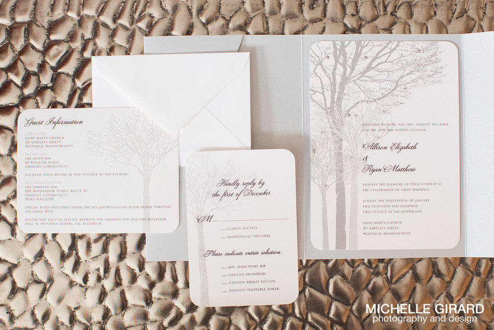 TheRiverviewWinterWedding_SimsburyCT_MichelleGirardPhotography006.jpg
